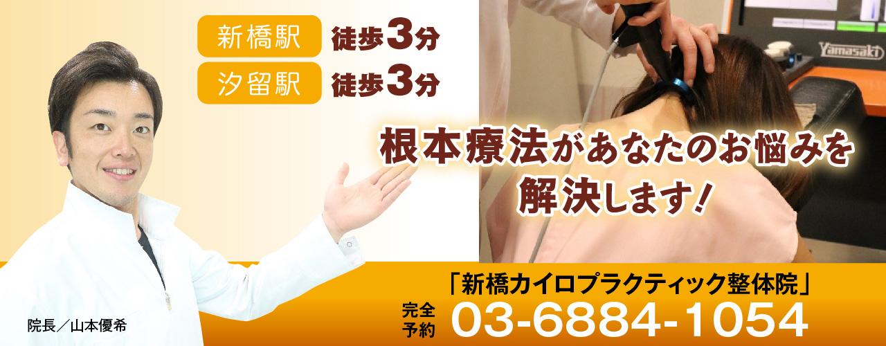 【初回3000円OFF】新橋・銀座エリアにお勤めのサラリーマン・OLの方が多数来院する整体院。デスクワークや日常での悪い姿勢があなたの頭痛や肩こり、腰痛を引き起こす。意外に知られていない痛みの根本原因。根本原因を見つけて無駄な施術はもう止めましょう!